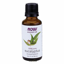 NOW® Eucalyptus Oil - 1 oz. (7545) , Clearance for stained/ dented