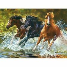 Running Horse Oil Painting By Number Propylene Abstract Linen Canvas Home Decors
