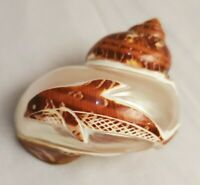 Hand carved Conch Seashell Dolphin engraved pearl shell etching beach home decor