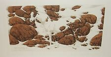 BEV DOOLITTLE HIDE AND SEEK CAMEO F LIMITED HAND SIGNED IN PENCIL LITHOGRAPH