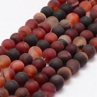 Natürliche Indische Achat Perlen 10mm Frosted Rot  Rund Edelsteine G74