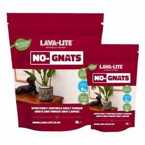 Lava Lite No Gnats - Plant Pest Prevention  - Houseplants Fungus Gnat Control