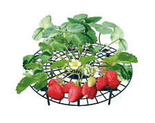 UPP Erdbeerreifer Fruchtreifer Erdbeerstütze Schneckenschutz Pflanzenhalter