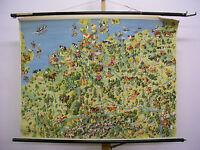 Schulwandkarte Wandkarte Fische Fischerei Landwirtschaft Deutschland 120x93~1955
