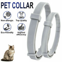 8 Month Flea & Tick Prevention Collar Pet Supplies Insect Repellent Neck