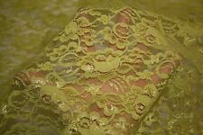 Light Green Shiny Floral Stretch Lace #37 Nylon Lycra Spandex Apparel Fabric BTY