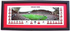 New 2010 St George Illawarra Dragons Premiers Grand Final Panoramic Framed