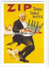 ad0819 - Zip Tonic Table Water - Dog Biting Butler -  Modern Advert Postcard