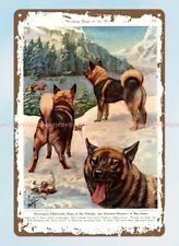 decorative gifts 1941 Norwegian Elkhound hunting dog metal tin sign