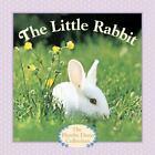 The Little Rabbit by Judy Dunn (2014, Children's Board Books)