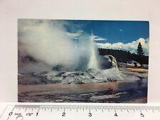 Yellowstone National Park Grotto Geyser Upper Geyser Basin Vintage Postcard