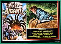 T18 Fotobusta L'Invasion Der Spinnen Giants Steve Brodie Barbara Hale Rebane 1