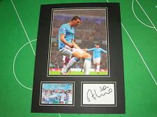 Manchester City Edin Dzeko Signed 2014 Champions Goal Celebration Mount