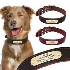 Genuine Leather Personalised Dog Collars Adjustable Customized Engraved ID Name