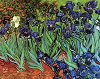 Irises Vincent Van Gogh CANVAS WALL ART PICTURE PRINT 24X18INCHES