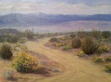 Chet Bittner Spring Desert Bloom, Southern California