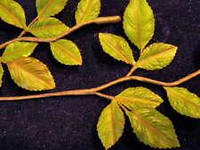 """Vintage Millinery Flower Leaf 1"""" SimpleBranch Green KN7"""