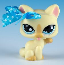 Littlest Pet Shop Cat Shorthair #981 Yellow With Blue Eyes Licking Paw