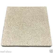 Coral Frag Tile XL 3 Inch Square 1 Tile FAST FREE USA SHIPPING
