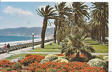 America Postcard - Palisades Park - Santa Monica - California    A7470