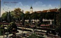 Insel Mainau Bodensee alte color Postkarte 1913 gelaufen Partie im Rosengarten