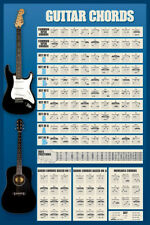 NEW MAXI POSTER GUITAR CORDS INSTRUMENT MUSIC EDUCATIONAL (.)