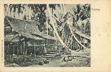 straits settlements, Malay Malaysia, PENANG, Native Dwelling (1899) Postcard