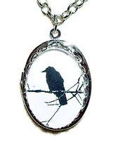 BLACK BIRD ON A BRANCH LOCKET Necklace SILVER Pltd Pendant CROW RAVEN