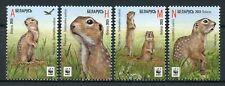 Belarus 2015 MNH Speckled Ground Squirrel WWF 4v Set Wild Animals Fauna Stamps