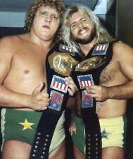 THE FABULOUS FREEBIRDS 8X10 PHOTO WRESTLING WWE WWF PICTURE
