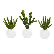 "10"" Cactus Succulent Artificial Plant In White Vase (Set Of 3)"