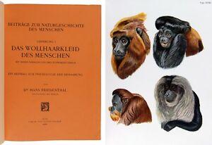 1908-12 FRIEDENTHAL - NATURGESCHICHTE d. MENSCHEN - komplett in 5 Lieferungen