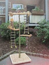 FREISITZ aus Holz Papageienfreisitz JAVA WURZELHOLZ Papageienspielzeug 1,40 M