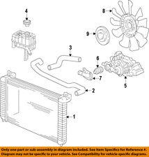 GM OEM-Radiator Coolant Overflow Recovery Tank Cap 13502509
