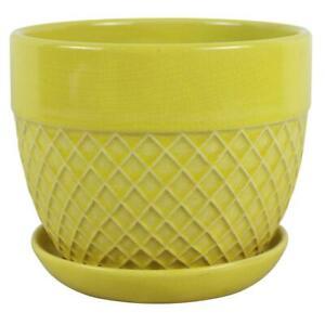Trendspot Acorn Bell Ceramic Planter 6-Inch Yellow