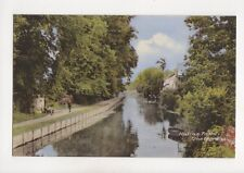 Haling Path Thetford Vintage Postcard 196b