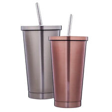 2pcs Stainless Steel Tumbler with Straw Water Drinking Cups Coffee Mug 500ml