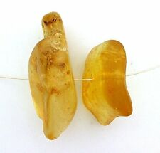 13.95 Grams Two Polished Natural Copal Amber Focal Bead Gemstone Gem Stone acb2