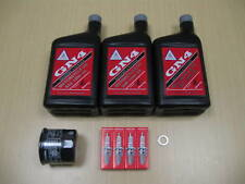 New 1999-2007 Honda VT 600 VT600 Shadow VLX OE Basic Oil Service Tune-Up Kit