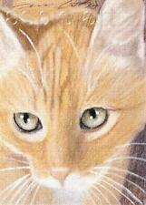 ACEO print limited edition ginger tabby cat by Anna Hoff