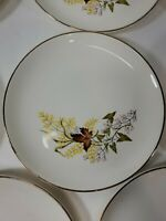 "11pc Taylor Smith Leaf O' Gold Vintage 6½"" Bread & Butter Plate Gold Leaf & Rim"