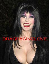 "Cassandra Peterson ""Elvira"" ""Mistress of the Dark"" SEXY"" ""Pin-Up"" PHOTO! #(39)"