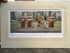 Border Terrier Rare ltd edition art print by Paul Doyle.  All For One
