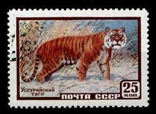 Sibirischer Tiger. 1W. Gest. UdSSR 1959