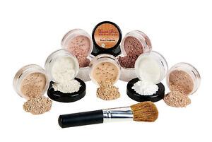 $40 Special (Fair 2 & Bisque) Mineral Makeup Kit Bare Face Brush Foundation Set