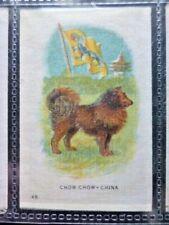 "I.T.C. WW1 ERA SILK ""ANIMAL WITH FLAG"" CHOW CHOW - CHINA NO.48"