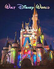 DISNEY Cinderella CASTLE - COLORS - Travel Souvenir Flexible Fridge Magnet