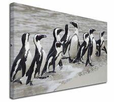 More details for sea penguins x-large 30