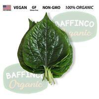 Fresh Natural Organic Wild Betel Leaves Florida Lolot La Lot Piper Sarmentosum
