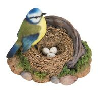 Blue Tit Standing on Rusty Pail Guarding Eggs Highly Detailed Decoration
